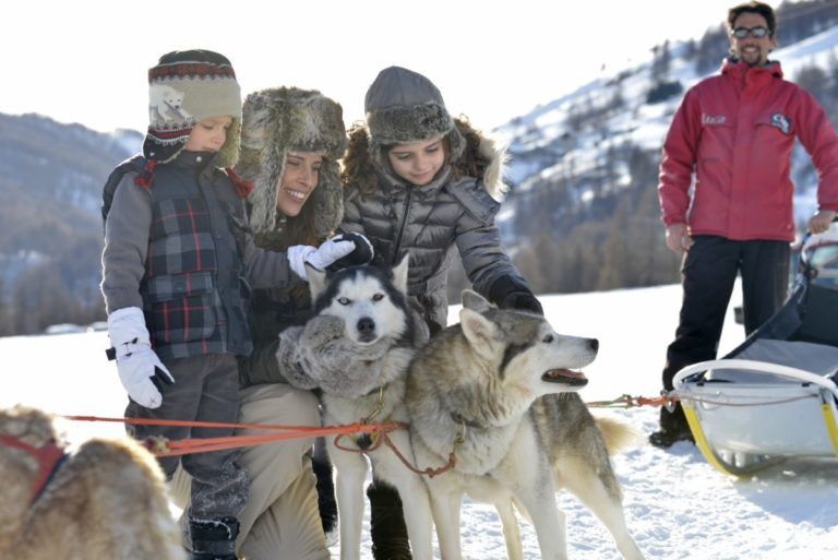 Family petting husky sled dogs
